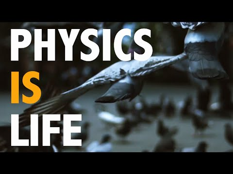 How Physics is Part of Our Life